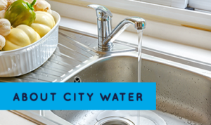 About CityWater